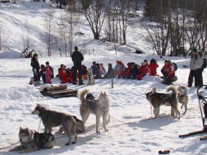 Traineaux à chiens Chamonix Vie et montagne